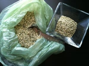 Muscle-Building Food of the Day: Hemp Seeds