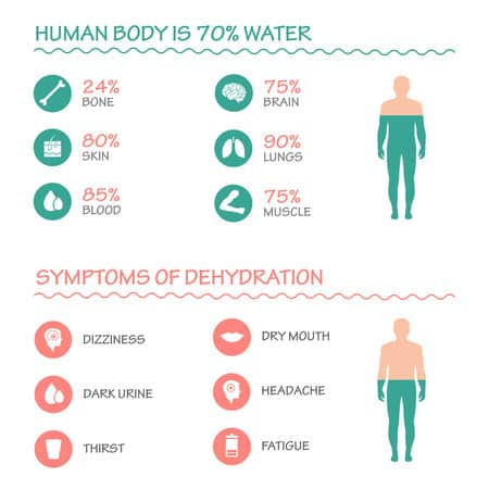 Food And Fitness Challenge Day 3 Hydration Abs Upper Body