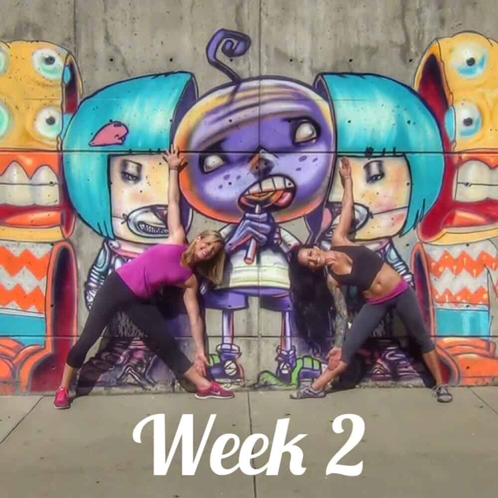 30-Day Challenge Week 2